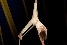 Festival des Arènes dela danse et du cirque