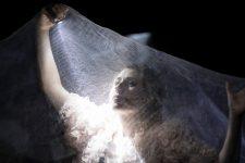 Une Traviata entre opéra et théâtre