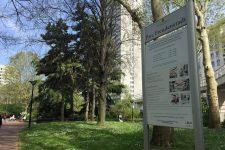 Le parc Freudenstadt agrandi, lespelouses réduites