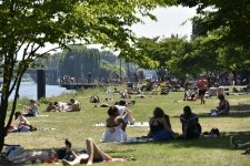 Les dimanches en Seine fontleurcome back