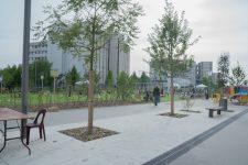 Aux Terrasses, cinéma et espaces verts plutôt que l'autoroute