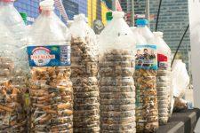 Des nettoyages en pagaille pourle World clean up day