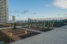 Ouverture du «jardin suspendu» des terrasses Boieldieu