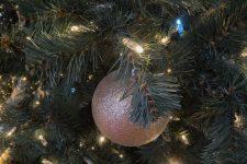 Le sapin de Noël géant ne fait pas l'unanimité