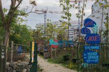 Un week-end consacré à l'agriculture urbaine